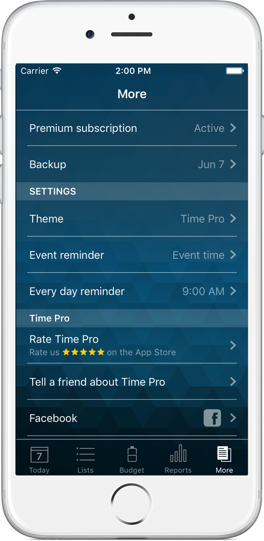 Time Pro for iPhone - More